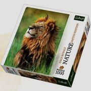 Puzzle 1000 Lew Kenia Nature Limited Edition Wild Royals,