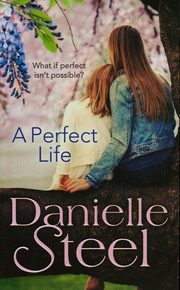 A Perfect Life, Steel Danielle