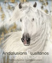 Andalusians Lusitanos, Boiselle Gabriele